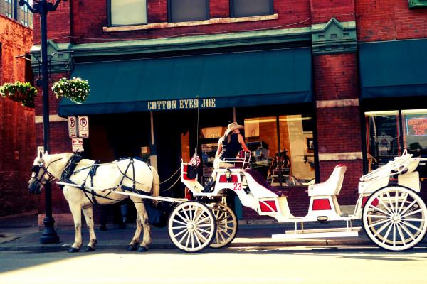載著遊客觀光的馬車